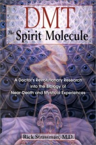 "Dr. Rick Strassman interview – ""DMT: The Spirit Molecule"" – #095"