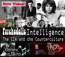 Psychedelic_Intelligence_Facebook